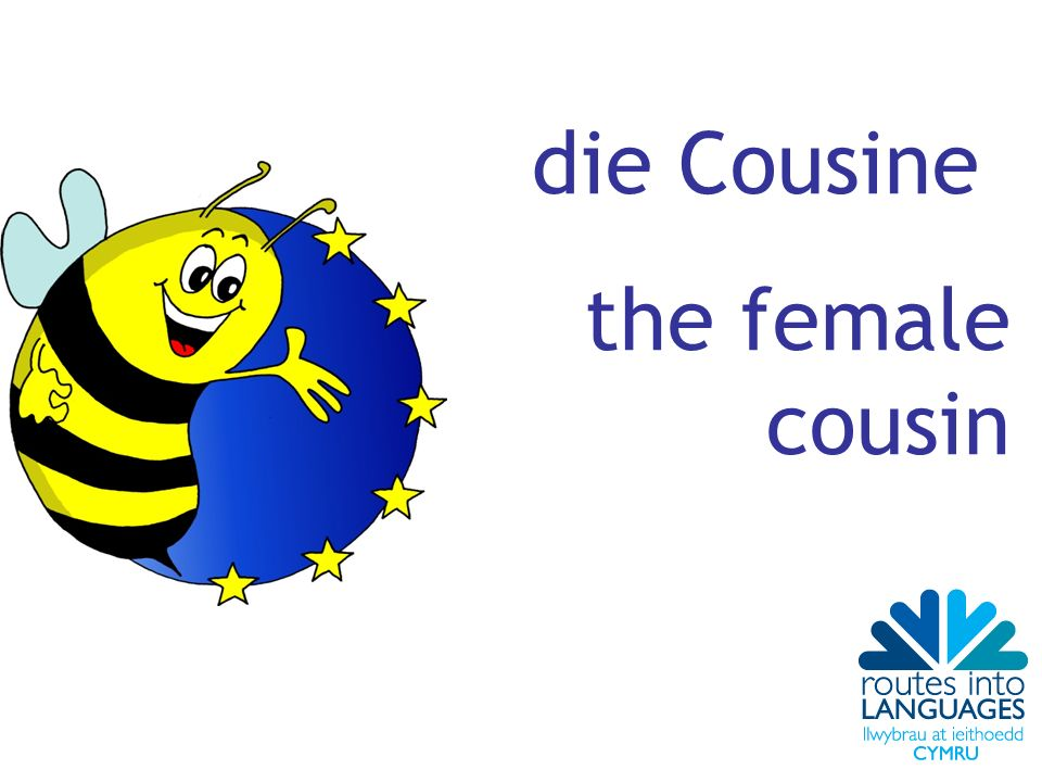 die Cousine the female cousin