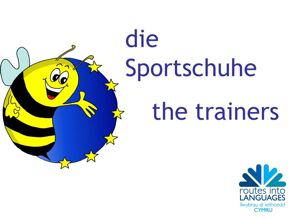 die Sportschuhe the trainers