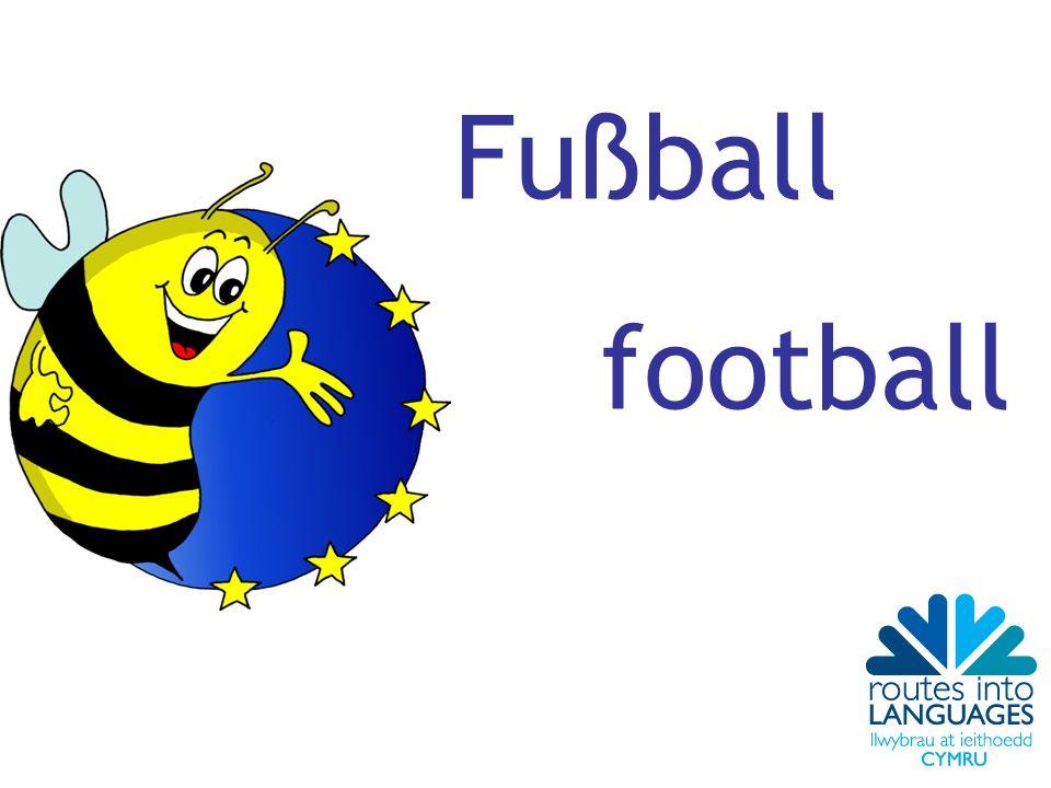 Fußball football