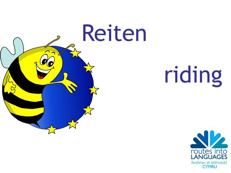 Reiten riding