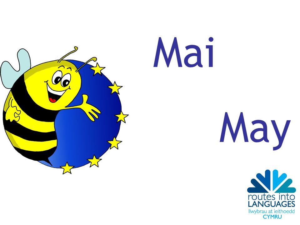 Mai May