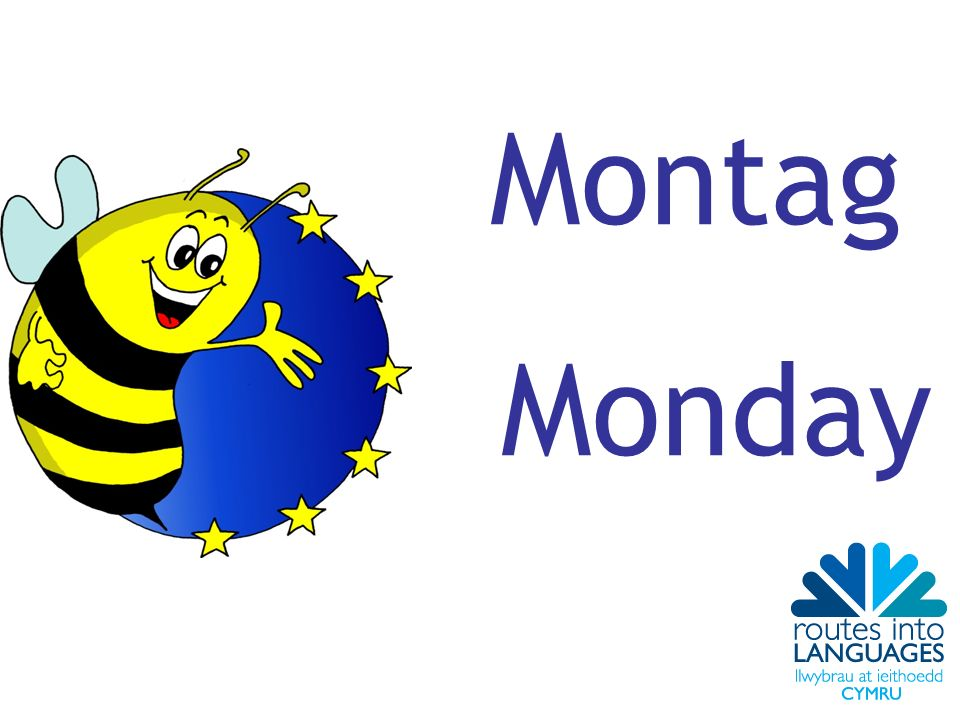 Montag Monday