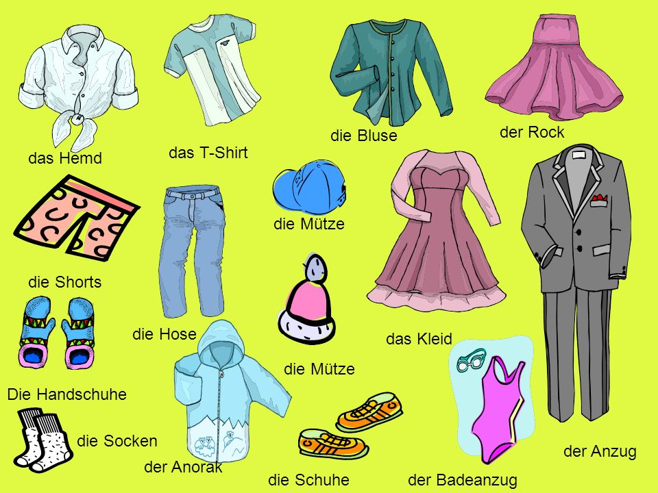 eine Bluse einen Anorak einen Anzug ein T- Shirt eine Hose Handschuhe ein Hemd ein Kleid einen Rock eine Schorts Schuhe eineWintermütze einen Badeanzug