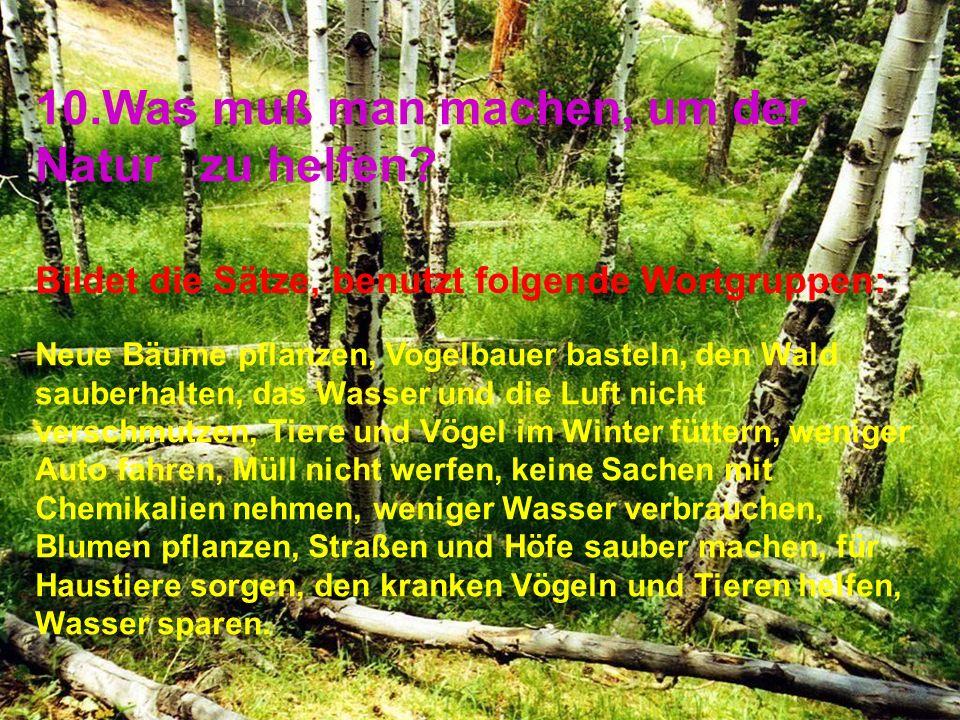 10.Was muß man machen, um der Natur zu helfen.