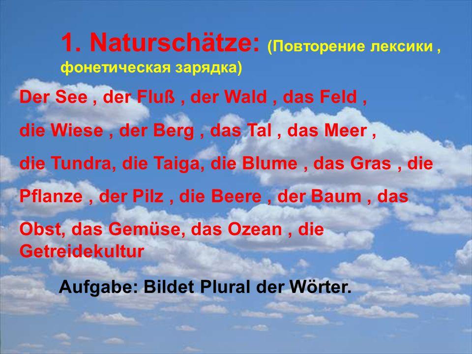 1. Naturschätze: (Повторение лексики, фонетическая зарядка) Der See, der Fluß, der Wald, das Feld, die Wiese, der Berg, das Tal, das Meer, die Tundra,