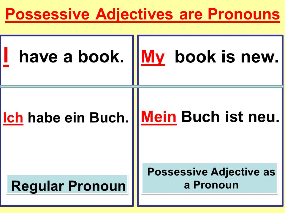 Possessive Adjectives are Pronouns I have a book. Ich habe ein Buch. Regular Pronoun My book is new. Mein Buch ist neu. Possessive Adjective as a Pron