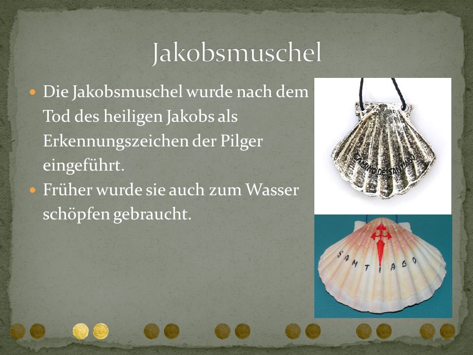 Die Jakobsmuschel wurde nach dem Tod des heiligen Jakobs als Erkennungszeichen der Pilger eingeführt. Früher wurde sie auch zum Wasser schöpfen gebrau
