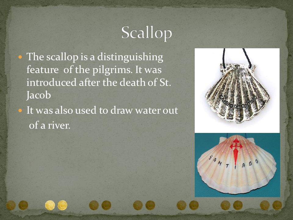 The scallop is a distinguishing feature of the pilgrims. It was introduced after the death of St. Jacob It was also used to draw water out of a river.