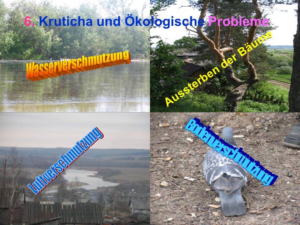 6. Kruticha und Ökologische Probleme Aussterben der Bäume