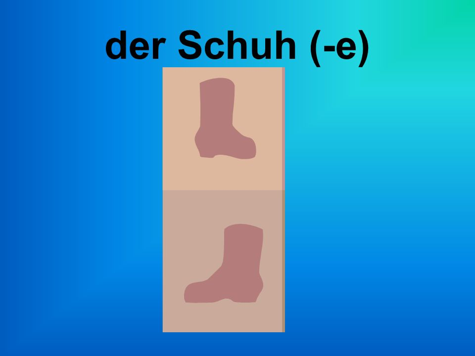 der Schuh (-e)