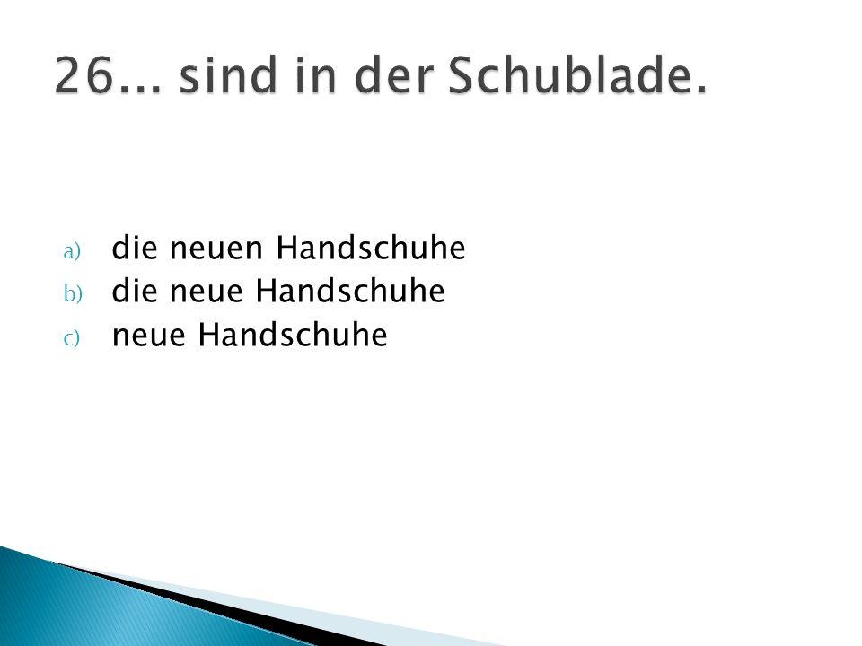 a) die neuen Handschuhe b) die neue Handschuhe c) neue Handschuhe