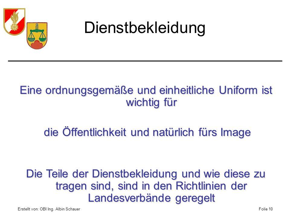 Erstellt von: OBI Ing. Albin SchauerFolie 10 Dienstbekleidung Eine ordnungsgemäße und einheitliche Uniform ist wichtig für die Öffentlichkeit und natü
