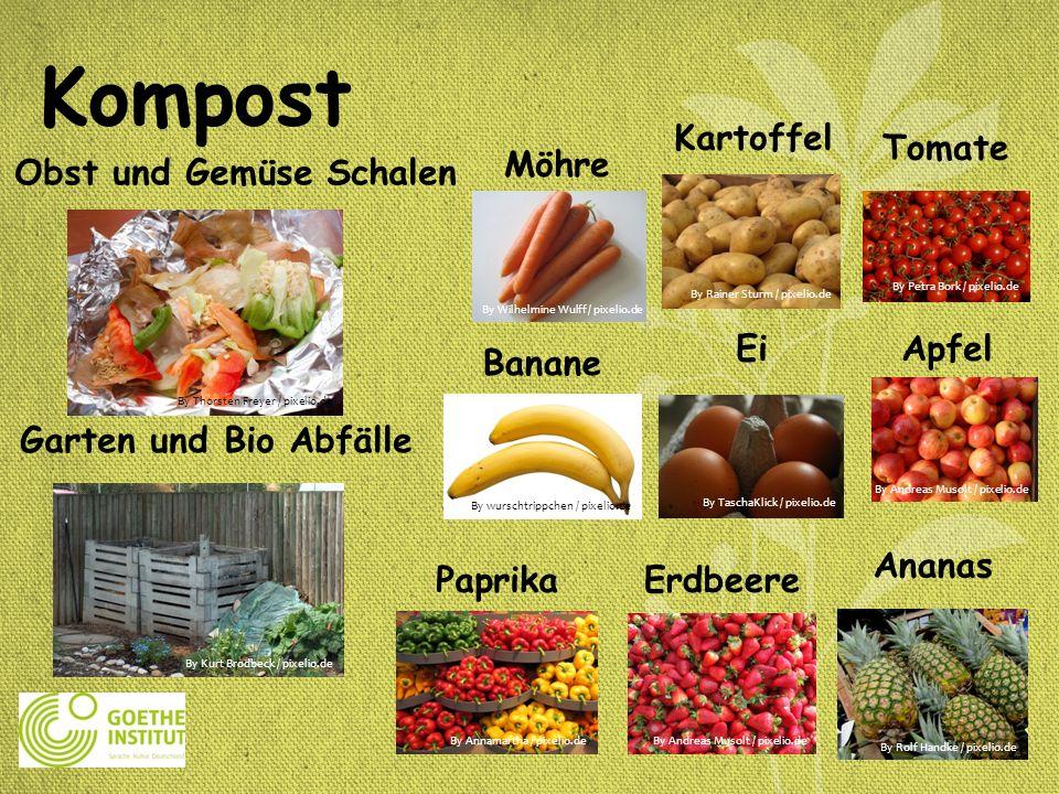 Kompost Ananas Kartoffel Tomate Möhre EiApfel PaprikaErdbeere Banane Garten und Bio Abfälle Obst und Gemüse Schalen By Thorsten Freyer / pixelio.de By