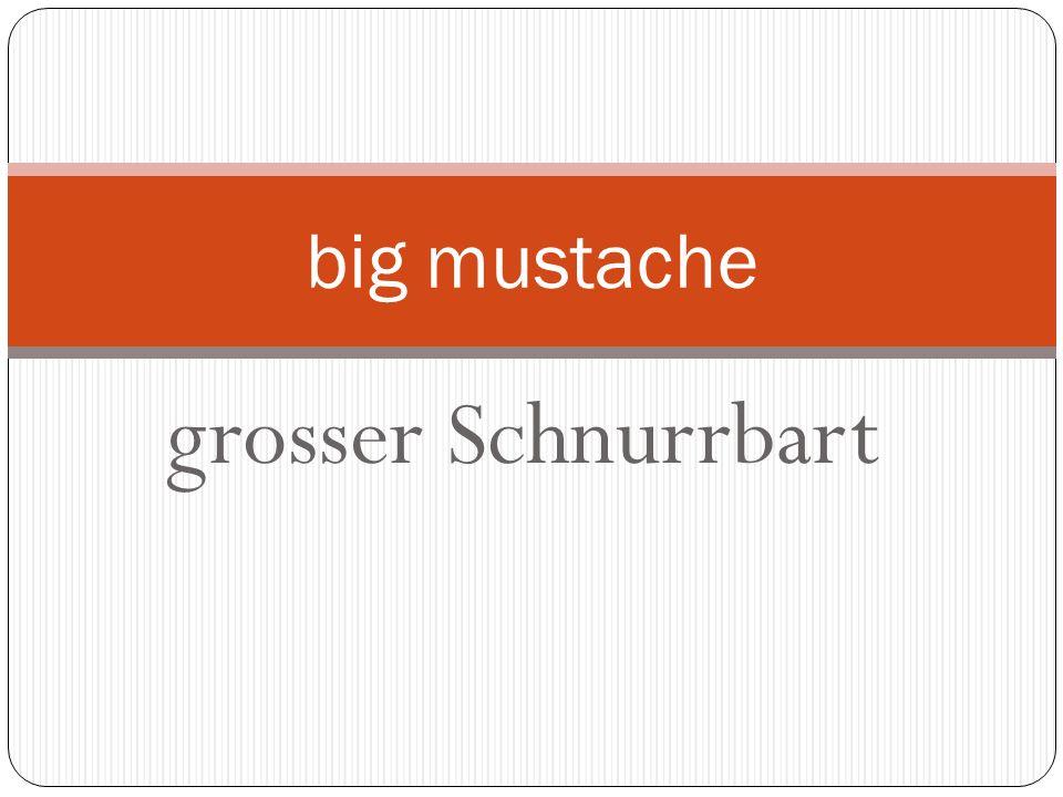 grosser Schnurrbart big mustache