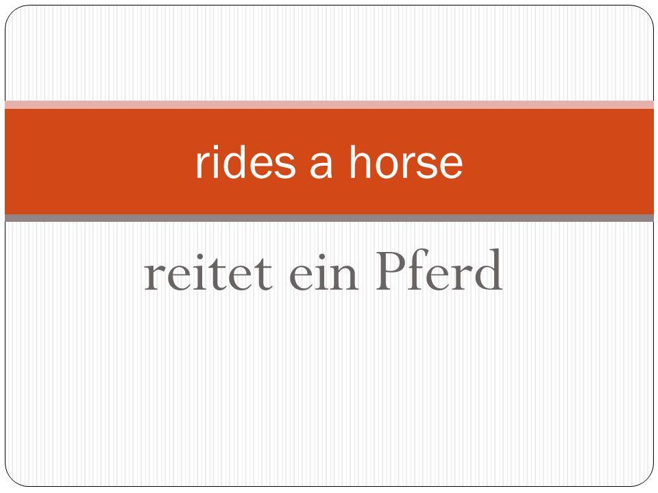 reitet ein Pferd rides a horse
