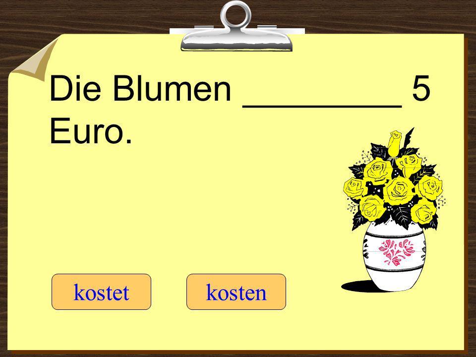 Die Blumen ________ 5 Euro. kostetkosten