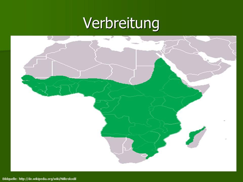 Verbreitung Bildquelle: http://de.wikipedia.org/wiki/Nilkrokodil