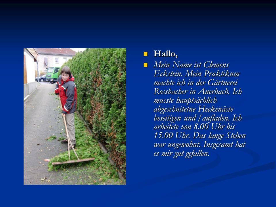 Hallo, Mein Name ist Clemens Eckstein. Mein Praktikum machte ich in der Gärtnerei Rossbacher in Auerbach. Ich musste hauptsächlich abgeschnitetne Heck