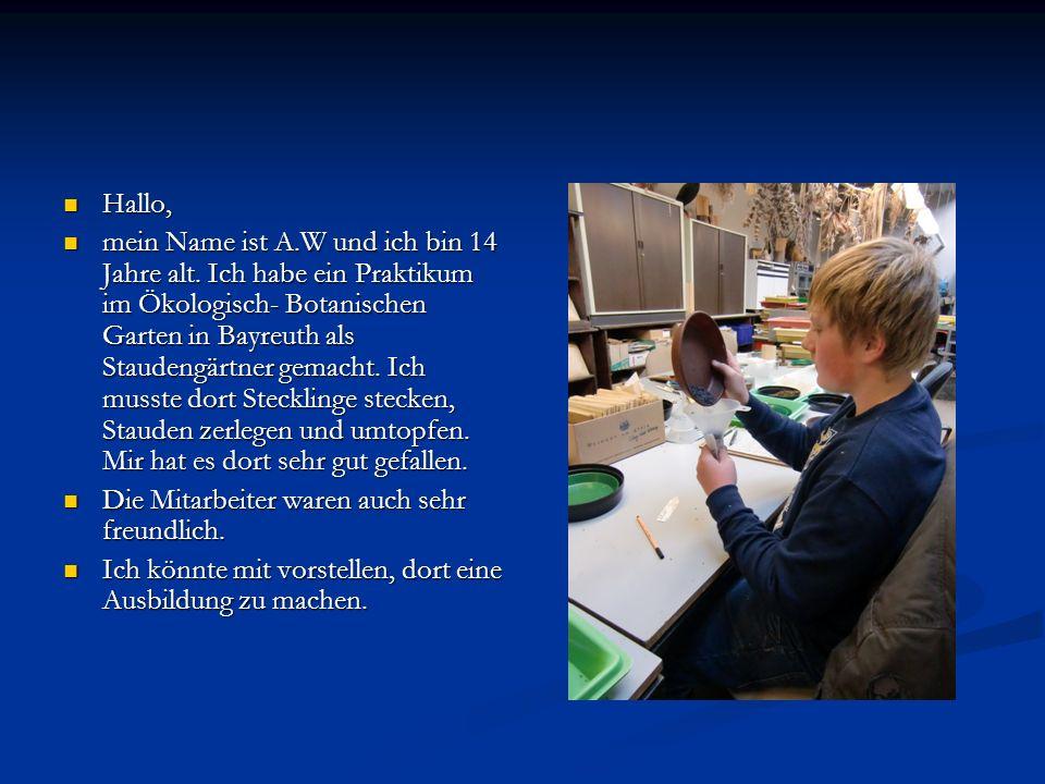 Hallo, Hallo, mein Name ist A.W und ich bin 14 Jahre alt. Ich habe ein Praktikum im Ökologisch- Botanischen Garten in Bayreuth als Staudengärtner gema