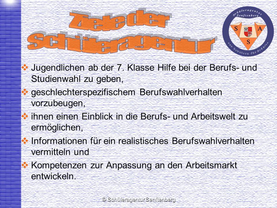 © Schüleragentur Senftenberg Jugendlichen ab der 7. Klasse Hilfe bei der Berufs- und Studienwahl zu geben, geschlechterspezifischem Berufswahlverhalte