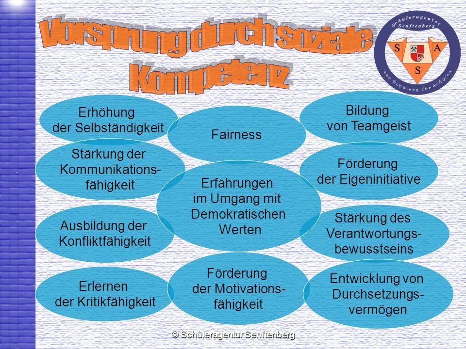 © Schüleragentur Senftenberg Bildung von Teamgeist Erhöhung der Selbständigkeit Förderung der Eigeninitiative Stärkung des Verantwortungs- bewusstsein