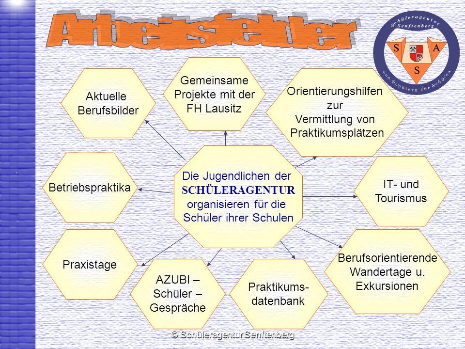 © Schüleragentur Senftenberg Berufsorientierende Wandertage u. Exkursionen IT- und Tourismus Gemeinsame Projekte mit der FH Lausitz Betriebspraktika P