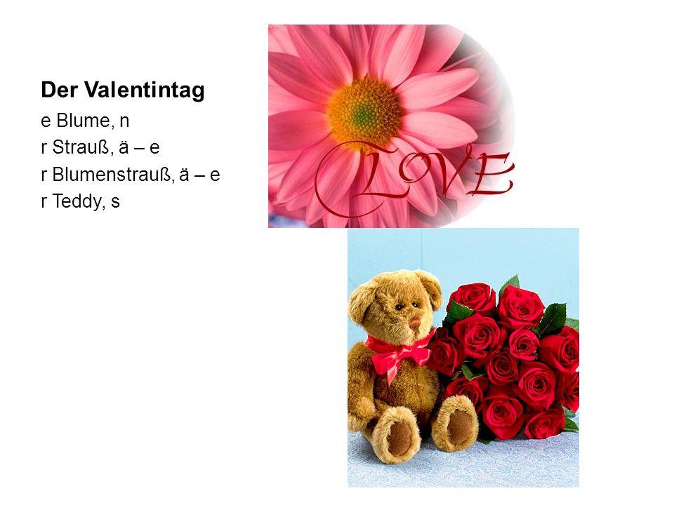 Der Valentintag e Blume, n r Strauß, ä – e r Blumenstrauß, ä – e r Teddy, s