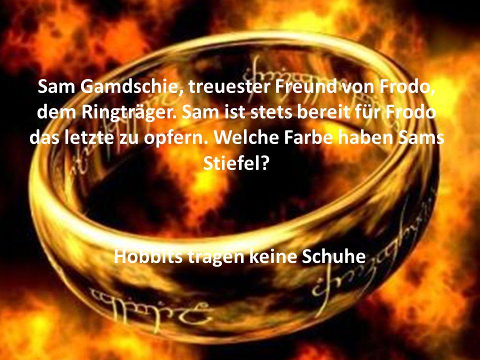 Sam Gamdschie, treuester Freund von Frodo, dem Ringträger.