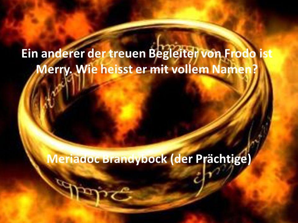 Ein anderer der treuen Begleiter von Frodo ist Merry.
