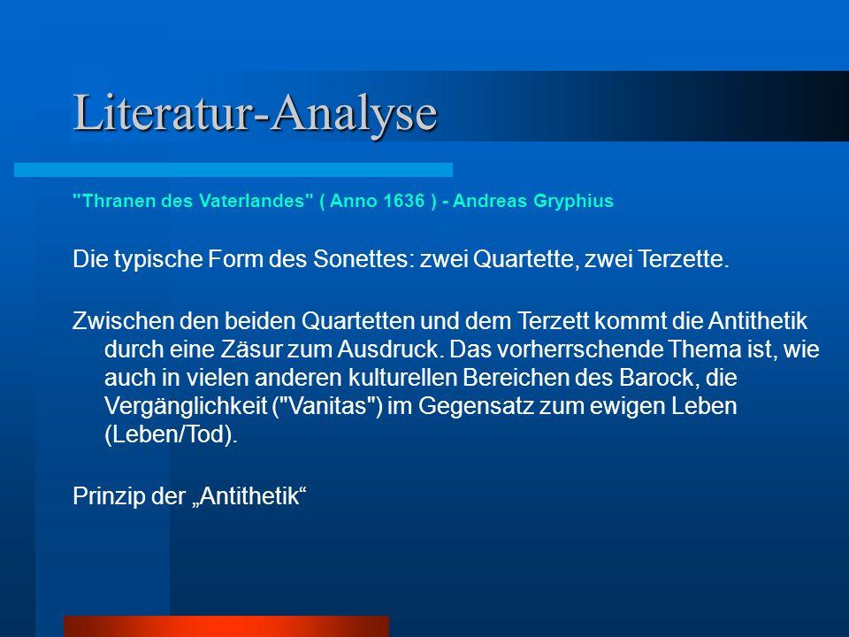 Literatur-Analyse