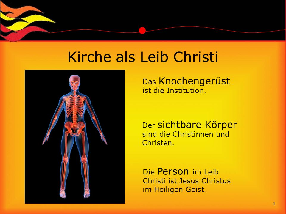 Kirche als Leib Christi Das Knochengerüst ist die Institution. 4 Der sichtbare Körper sind die Christinnen und Christen. Die Person im Leib Christi is