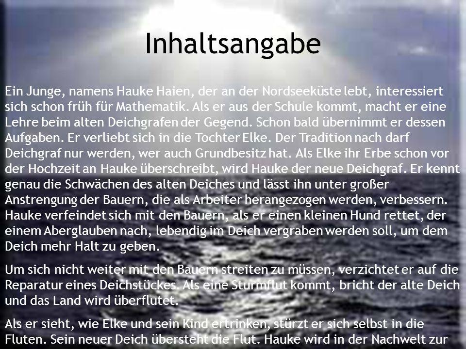Ein Junge, namens Hauke Haien, der an der Nordseeküste lebt, interessiert sich schon früh für Mathematik. Als er aus der Schule kommt, macht er eine L