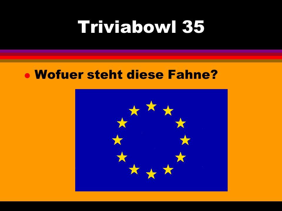 Triviabowl 35 l Wofuer steht diese Fahne