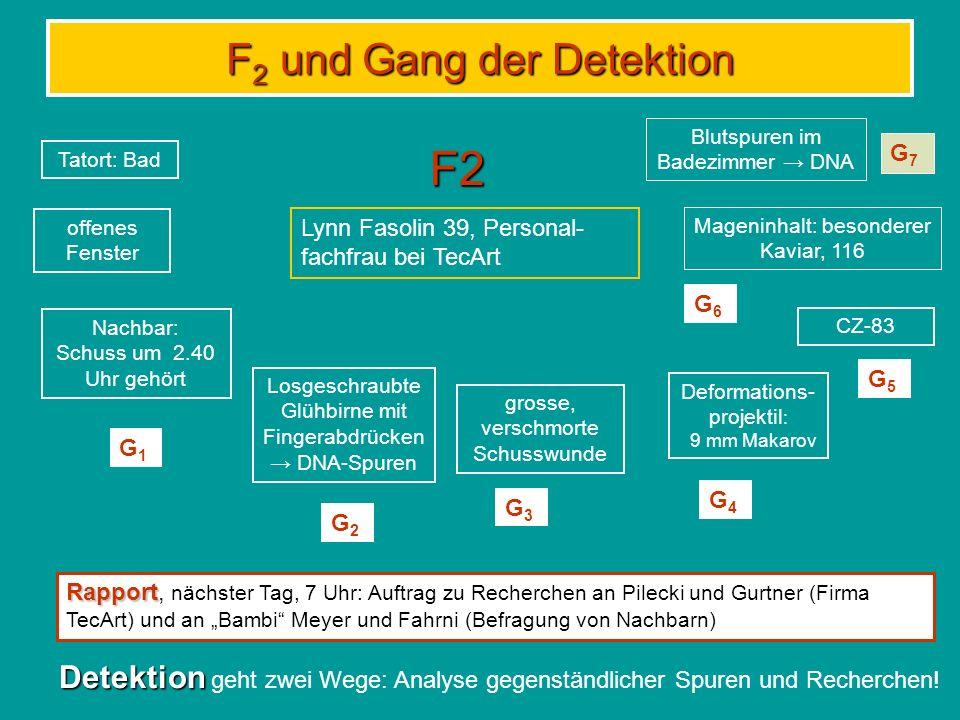 F 2 und Gang der Detektion F2 Tatort: Bad offenes Fenster Nachbar: Schuss um 2.40 Uhr gehört Deformations- projektil : 9 mm Makarov Losgeschraubte Glühbirne mit Fingerabdrücken DNA-Spuren grosse, verschmorte Schusswunde CZ-83 Lynn Fasolin 39, Personal- fachfrau bei TecArt G1G1 G2G2 G3G3 G4G4 G5G5 Rapport Rapport, nächster Tag, 7 Uhr: Auftrag zu Recherchen an Pilecki und Gurtner (Firma TecArt) und an Bambi Meyer und Fahrni (Befragung von Nachbarn) Detektion Detektion geht zwei Wege: Analyse gegenständlicher Spuren und Recherchen.