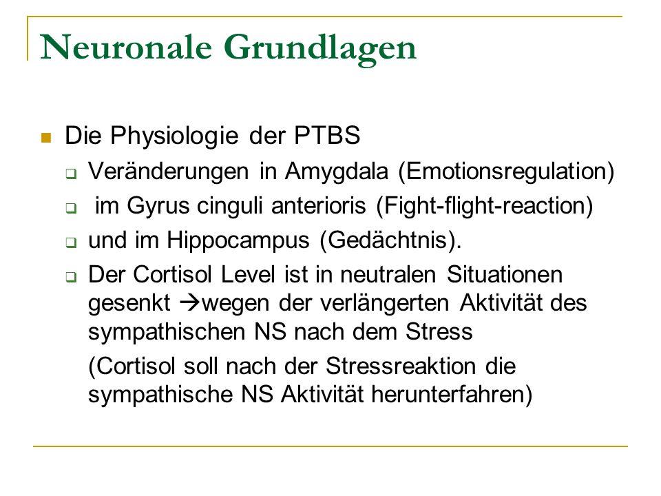 Neuronale Grundlagen Die Physiologie der PTBS Veränderungen in Amygdala (Emotionsregulation) im Gyrus cinguli anterioris (Fight-flight-reaction) und i