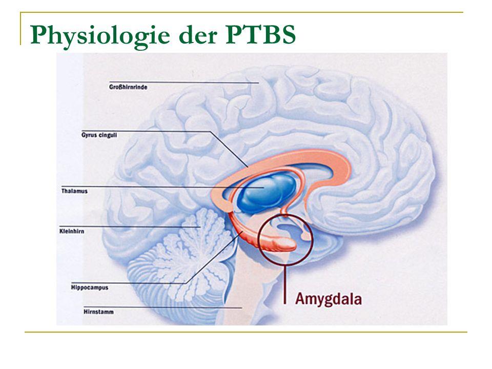 Physiologie der PTBS