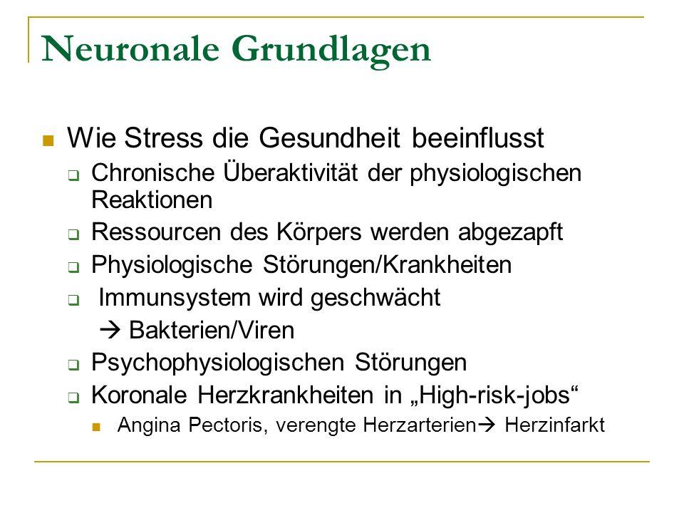 Neuronale Grundlagen Wie Stress die Gesundheit beeinflusst Chronische Überaktivität der physiologischen Reaktionen Ressourcen des Körpers werden abgez