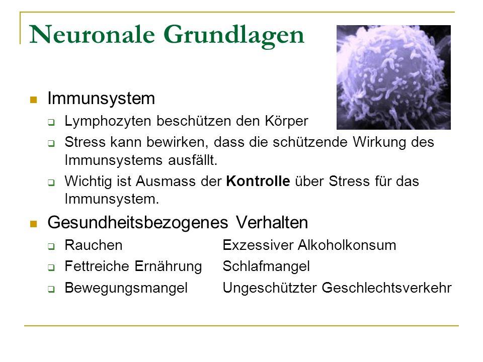 Neuronale Grundlagen Immunsystem Lymphozyten beschützen den Körper Stress kann bewirken, dass die schützende Wirkung des Immunsystems ausfällt. Wichti