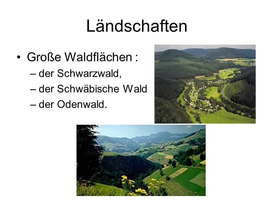 Ländschaften Große Waldflächen : –der Schwarzwald, –der Schwäbische Wald –der Odenwald.