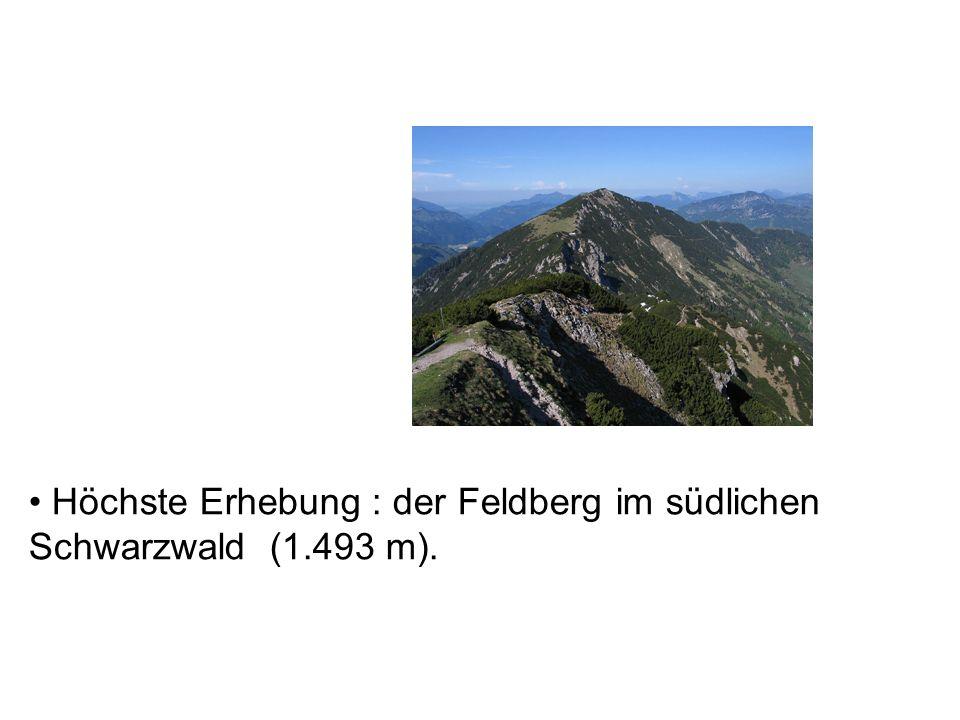 Höchste Erhebung : der Feldberg im südlichen Schwarzwald (1.493 m).
