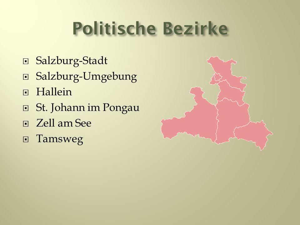 Politische Bezirke Salzburg-Stadt Salzburg-Umgebung Hallein St. Johann im Pongau Zell am See Tamsweg