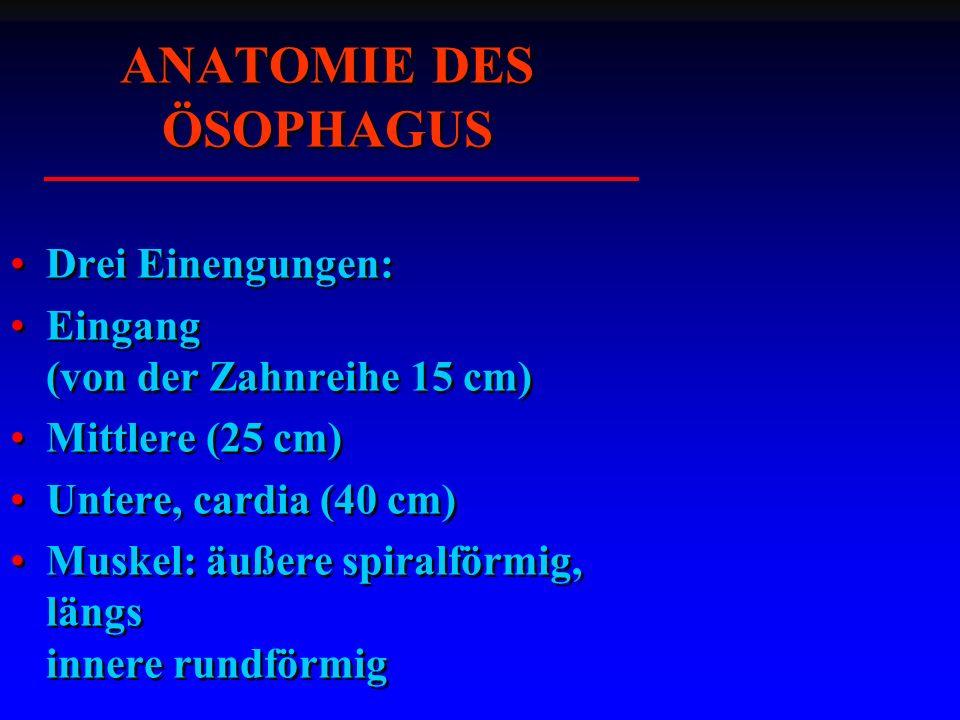 HISTOLOGIE DES ÖSOPHAGUS epithel lamina propria lamina muscularis mucosae tela submucosa tela muscularis .