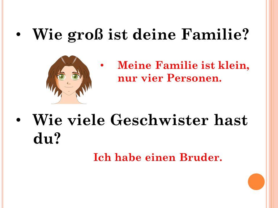 Wie groß ist deine Familie? Wie viele Geschwister hast du? Meine Familie ist klein, nur vier Personen. Ich habe einen Bruder.