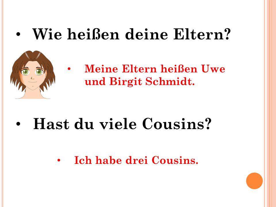 Hast du viele Cousins? Wie heißen deine Eltern? Meine Eltern heißen Uwe und Birgit Schmidt. Ich habe drei Cousins.
