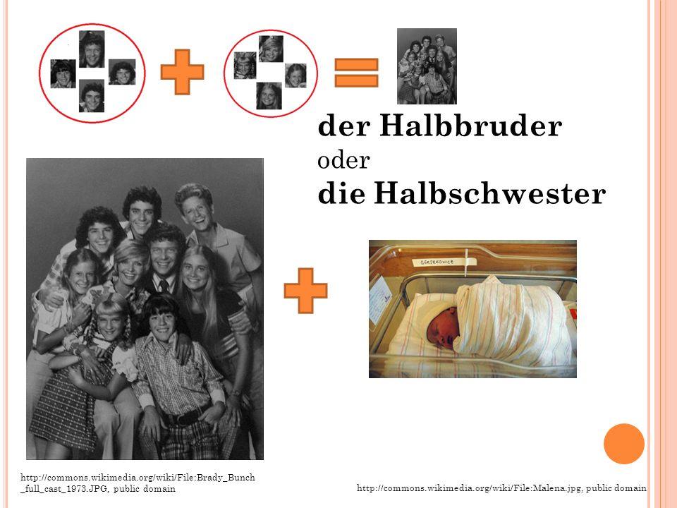 der Halbbruder oder die Halbschwester http://commons.wikimedia.org/wiki/File:Brady_Bunch _full_cast_1973.JPG, public domain http://commons.wikimedia.o