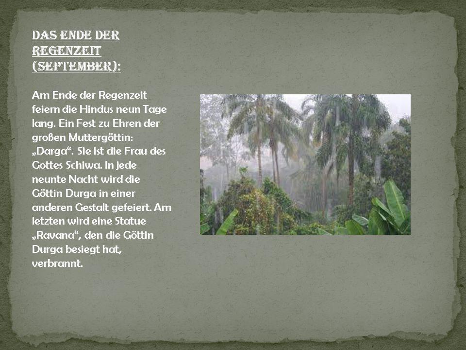 Das Ende der Regenzeit (September): Am Ende der Regenzeit feiern die Hindus neun Tage lang. Ein Fest zu Ehren der großen Muttergöttin: Darga. Sie ist