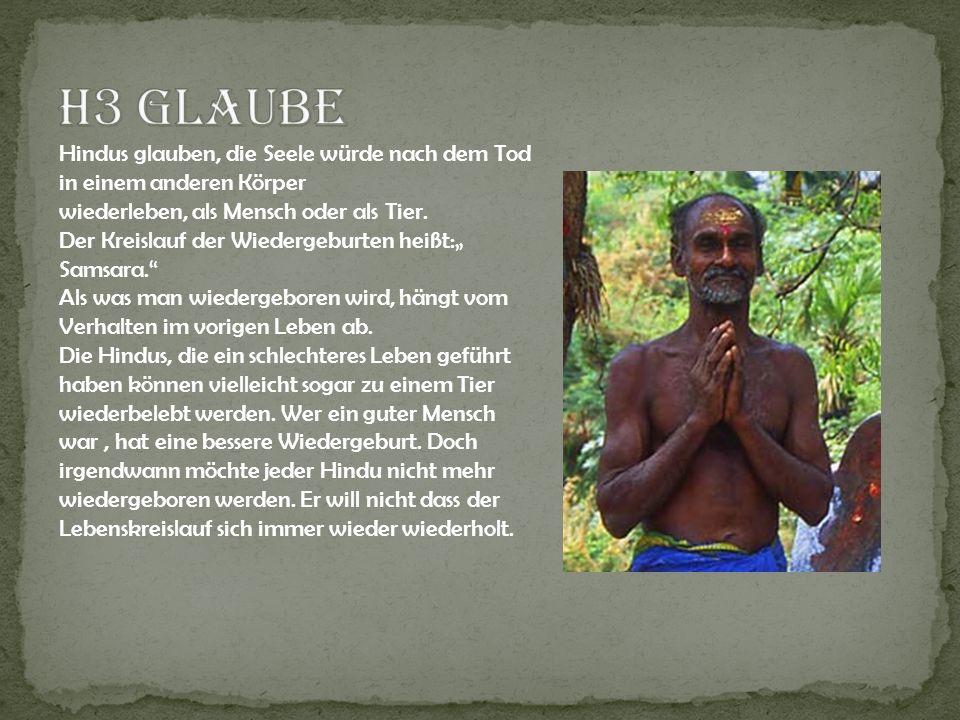 Hindus glauben, die Seele würde nach dem Tod in einem anderen Körper wiederleben, als Mensch oder als Tier. Der Kreislauf der Wiedergeburten heißt: Sa