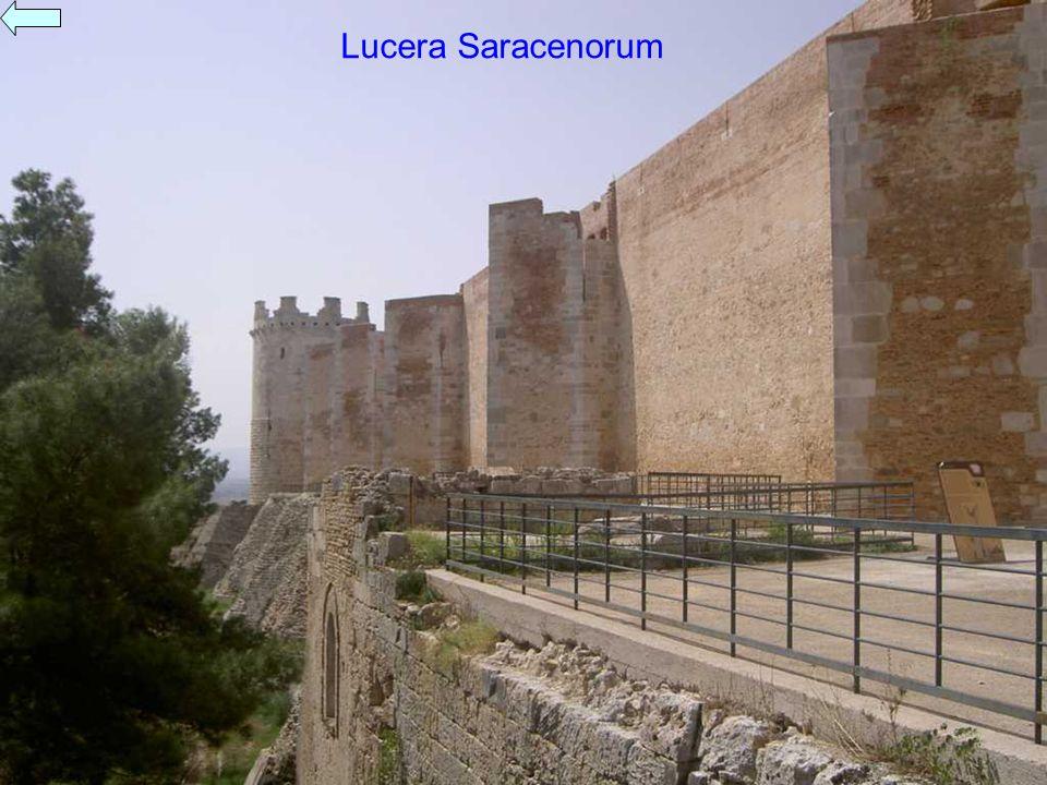 Lucera Saracenorum