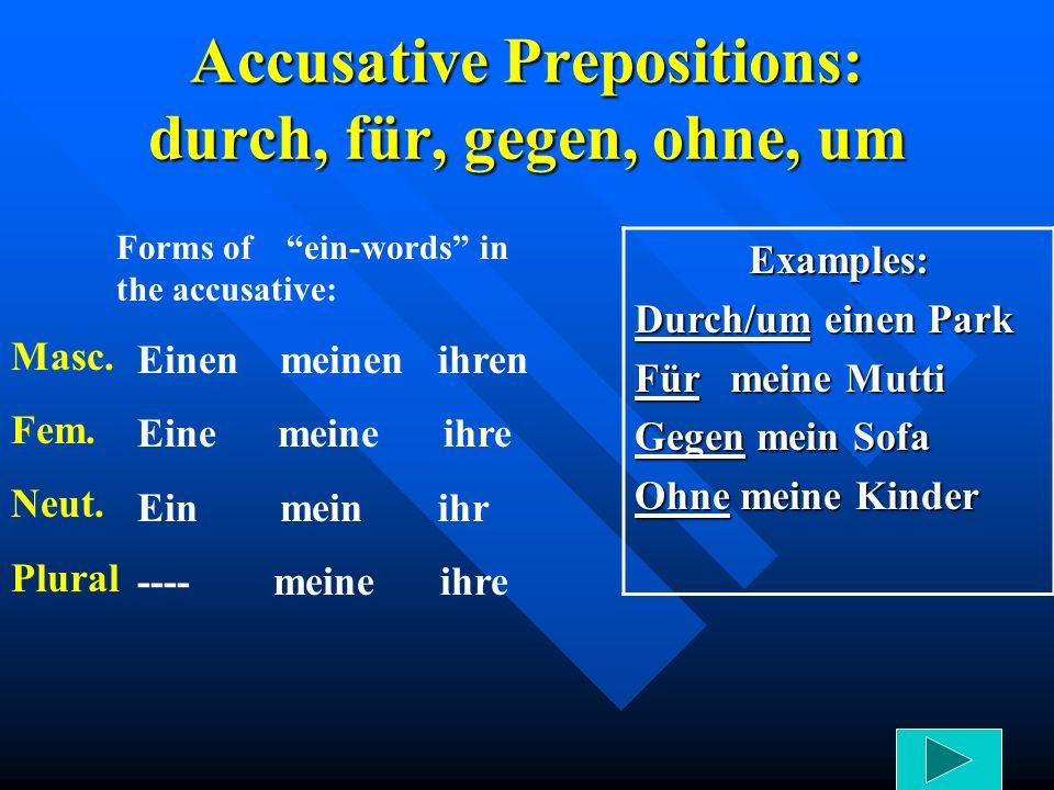 Accusative Prepositions: durch, für, gegen, ohne, um Forms of ein-words in the accusative: Einen meinen ihren Eine meine ihre Ein mein ihr ---- meine