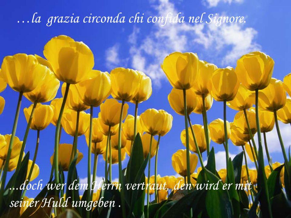 …la grazia circonda chi confida nel Signore....doch wer dem Herrn vertraut, den wird er mit seiner Huld umgeben.